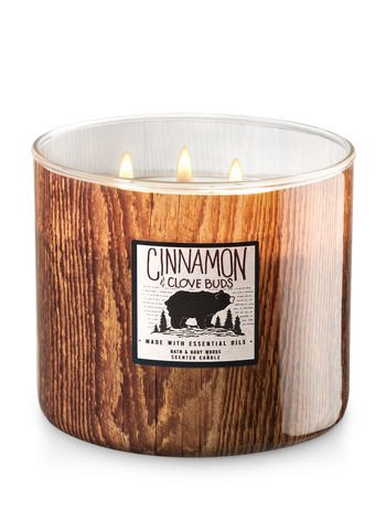 Cinnamon & Clove Buds Scented 3 Wick Candle (Camp Winter Edition) 2017