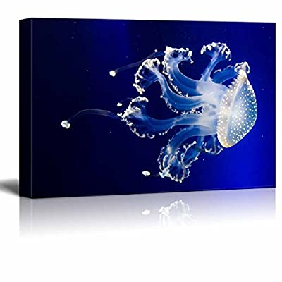 Handsome Creative Design, Crafted to Perfection, Jellyfish in Blue Water Wall Decor
