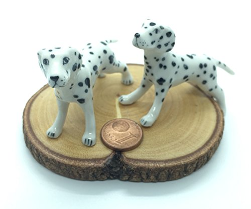 Cute Two Ceramic White Dalmatian Dollhouse Miniatures for Decoration (Spoon Long Sleeve T-shirt)