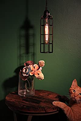 Wall Mount Industrial Long Cage Light with Cloth Covered Cord and Long Nostalgia Era Bulb