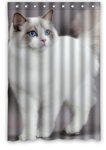(RAGDOLL CAT We love animal, cute picture for Polyester Shower Curtain 48