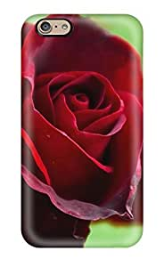 First-class Case Cover For Iphone 6 Dual Protection Cover Beautiful Red Rose by ruishername