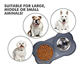 Pecute Dog Bowl Slow Feeder Bloat Stop Pet Bowl Fun Feeder Eco-Friendly Non-Toxic No Chocking Healthy Design Bowl with No-Spill Non-Skid Silicone Mat Stainless Steel Water Bowl for Dogs Cats and Pets