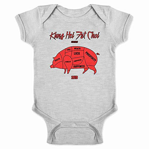 Year of The Pig Kung HEI Fat Choy 2019 Gray 6M Infant Bodysuit