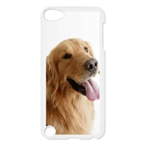 Lovely Retriever Dog Ipod Touch 5 Cases, Ipod Touch 5 Cases for Boys Protective Cute Tyquin - White