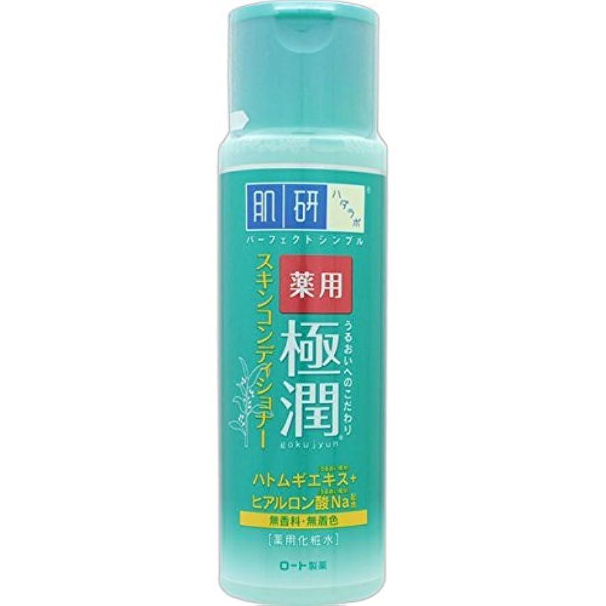 ミュート申請中ミネラル肌研 薬用 極潤 スキンコンディショナー 170mL (医薬部外品)