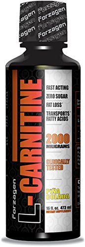 Forzagen L-Carnitine 100% Pure Carnitine Liquid Formula (16 fl. oz., Pina Colada)