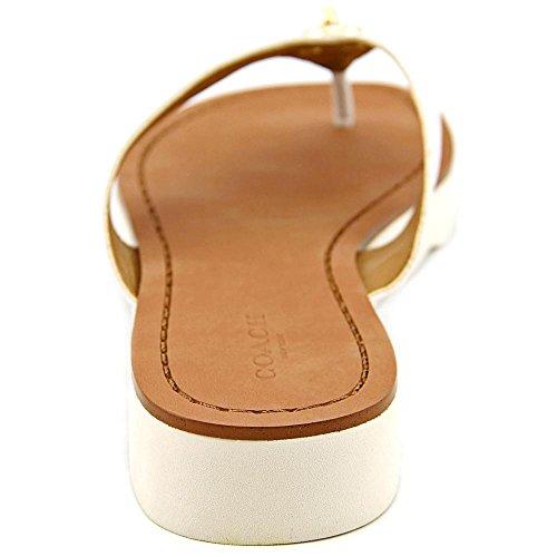 233956e7aa77 Coach Shelly Women Open Toe Leather Flip Flop Sandal high-quality ...