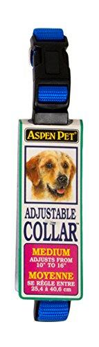 Petmate ASPEN PET PRODUCTS 15708 Nylon Adjustable Collar, 10-Inch, Blue Aspen Pet Adjustable Dog Collar