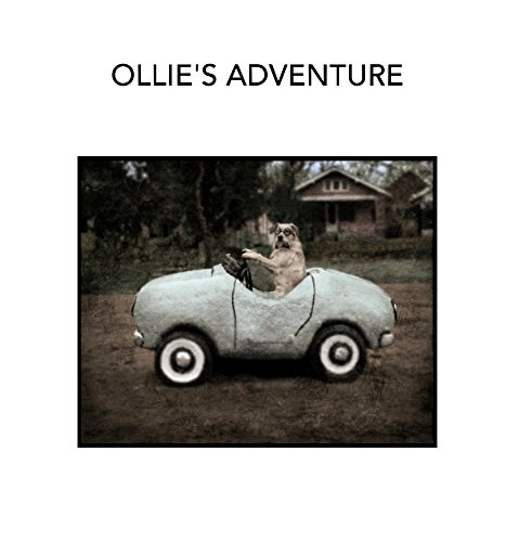 Ollie's Adventure ebook