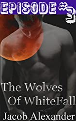Episode 3: The Wolves Of Whitefall (Gay Werewolf Erotica) (English Edition)