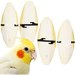 SunGrow Cuttlefish Bones for Cockatiels, 6 Inches, for Sharp Beaks, Healthy Bones, Nice Feathers, Excellent Calcium Source, Cage Holder Included, 4 Pieces