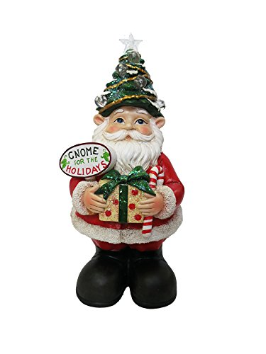 Alpine Corporation ZEN210S Xmas Gnome Status with Color Changing LED Lights by Alpine Corporation