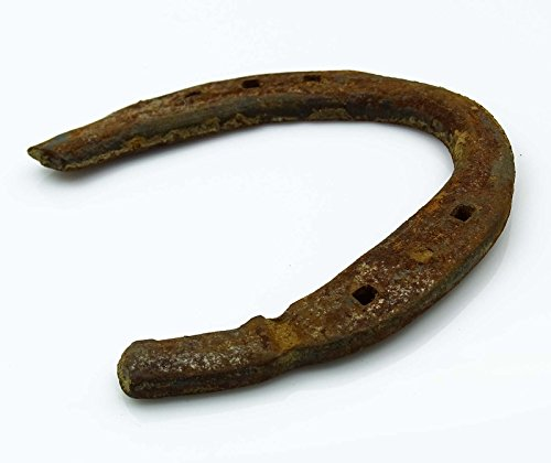 Rusty Rustic Metal Iron Used Horse Shoe Good Luck Charm Horseshoe ()