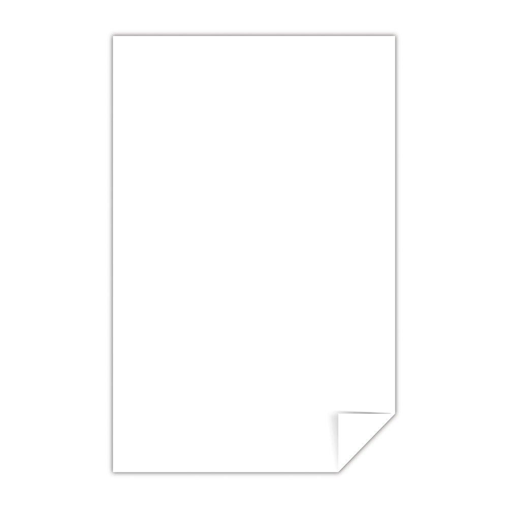 Renewed Exact Vellum Bristol 67 lb//147 gsm 94 Brightness White 8.5 x 14 80212 250 Sheets