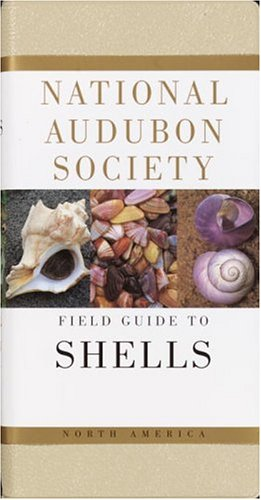 National Audubon Society Field Guide to North American Seashells (National Audubon Society Field Guide Series) - Book  of the National Audubon Society Field Guides