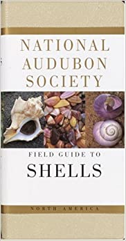 The Audubon Society Field Guide to North American Seashells (The Audubon Society Field Guide Series)