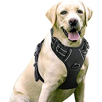 RabbitgooDog Harness No-Pull Pet Harness Adjustable Outdoor Pet Vest 3M Reflective Oxford Material Vest for Dogs Easy Control for Small Medium Large Dogs (Black, L)