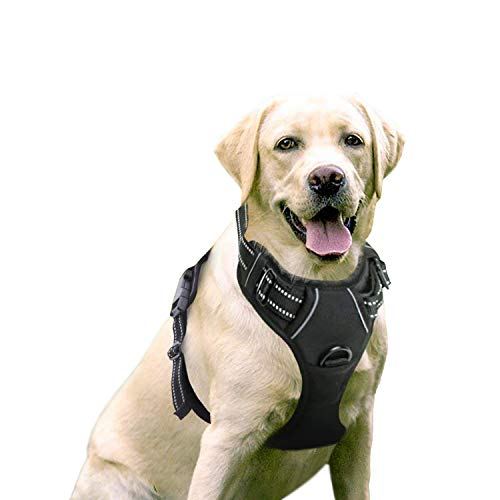 Slip Free Adjustable Collar - Rabbitgoo  Dog Harness No-Pull Pet Harness Adjustable Outdoor Pet Vest 3M Reflective Oxford Material Vest for Dogs Easy Control for Small Medium Large Dogs (Black, L)