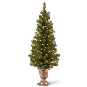 National Tree (MC7-308-40) Montclair Spruce Entrance Tree in 10-Inch Black/Gold Plastic Pot with 50 Clear UL-Lights, 4-Feet 84