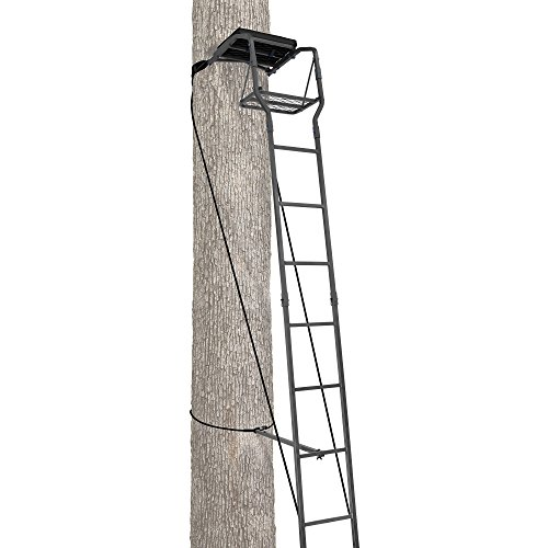 Ameristep 15′ Deer/Big Game or Small Game Ladder Stand
