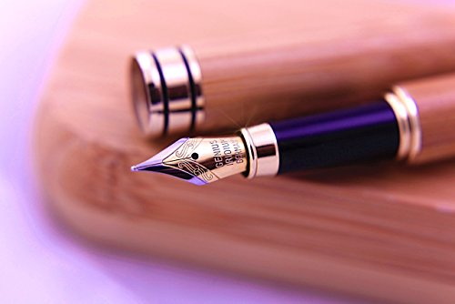 Best of the Best Fountain pen