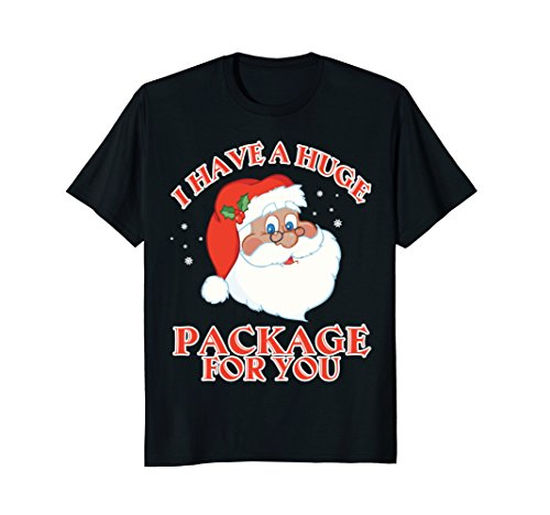 Santas Huge Package (Mens I Have A Huge Package For You T-Shirt Gift Santa Xmas Tee XL Black)
