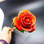Chadox-24K-Gold-Dipped-Roses-with-Long-Stem-Handmade-Preserved-Rose-Flower-Gift-for-Women-Girls-Birthday-Valentines-Day-Mothers-Day-Christmas-Orange-Red