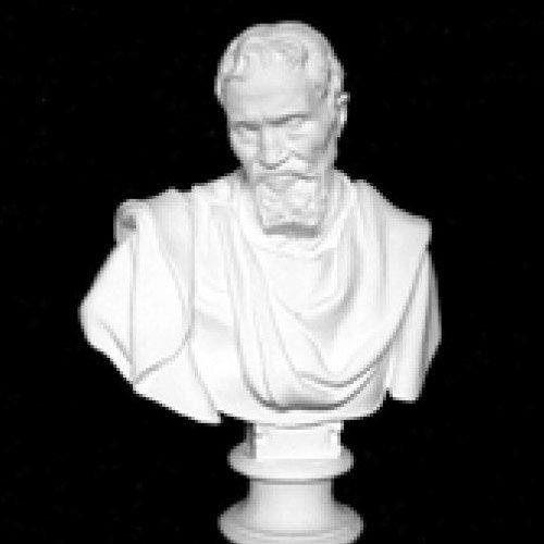 ミケランジェロ胸像(人体石膏像)【参考資料・観賞資料 石膏像】BB12714