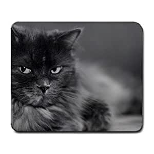 Animal Cat Funny & Cute Rectangle Mouse Pad By Joie 211