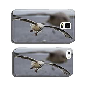 Seagulls cell phone cover case Samsung S5