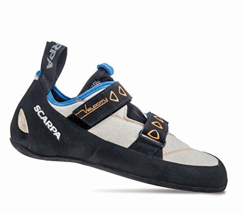 Scarpa Velocity Zapatos de escalada gris - lightgrey-royal blue
