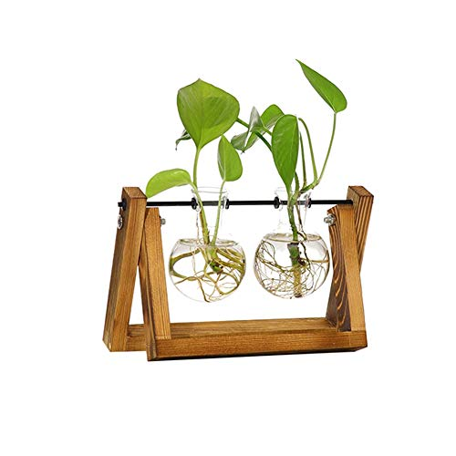 (Smartcoco Crystal Glass Test Tube Vase Flower Pots with Wooden Holder for Hydroponic Plants Home Office Decoration)