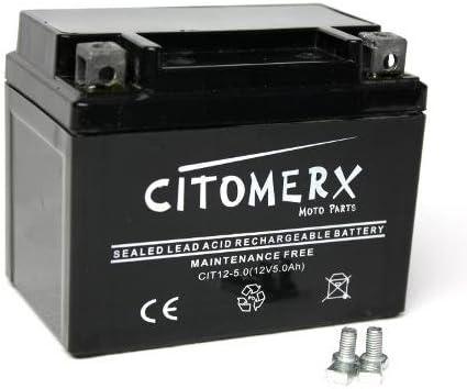 YTX4L-BS Batterie wartungsfrei 12V 5AH YB4L-B YT4L-B f/ür Vespa Sprint 50 2T 2014