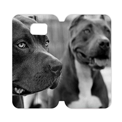 (Babu Building Print with Pit Bull Girl On S6 Edge Samsung Phone Case Plastic Abstract)