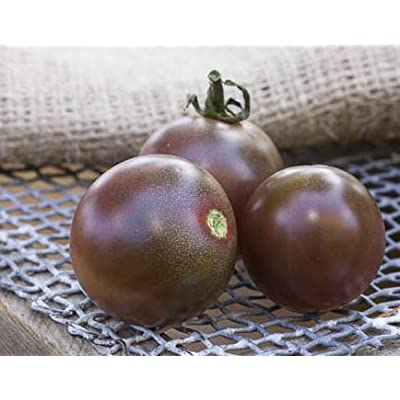 Black Cherry Heirloom Tomato Premium Seed Packet : Garden & Outdoor