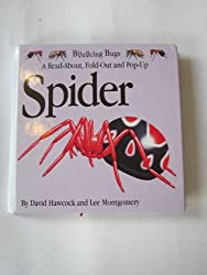Spider (Bouncing Bugs)
