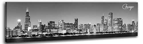 DJSYLIFE-Chicago Canvas Skyline Wall Art 13.8