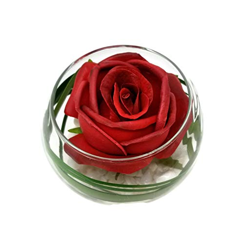 Floral Kingdom Real Touch Latex Single Flower in Glass vase for Gift, Centerpiece, or Home/Office Decor (Red Rose) ()