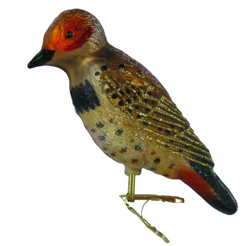 Old World Christmas Northern Flicker Glass Blown Ornament
