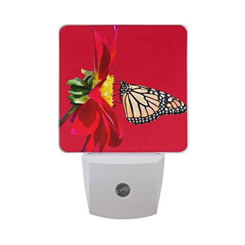 [Packof2]PluginLEDBrightBlueNightLightwithDusktoDawnSensor,AutoON/Off-PerfectforBathroom,HallwayandKitchen[Red Dahlia Monarch Butterfly] ()