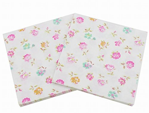 Salome Idea 60 Counts Little Floral,Luncheon Cocktail Napkins,Tea Party,Wedding,Little Floral Napkins(Little Floral 14)