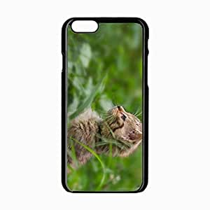 iPhone 6 Black Hardshell Case 4.7inch kitten grass stand attention Desin Images Protector Back Cover