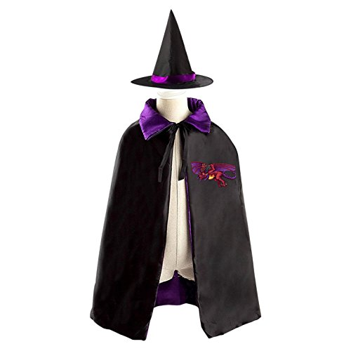 Terraria Costumes Halloween (Terraria Dragon Halloween Party Costume Kids Cloak Wizard Witch Cape and Hat)