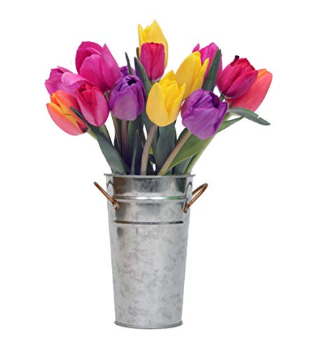Stargazer Barn - The Rainbow Confetti Bouquet - Colorful Fresh Tulips With Vase - California Grown