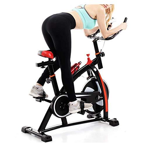 Leewa Exercise Bike, Indoor Cycling Bike Stationary Super Sound-Off Home Bike with Comfortable Seat Cushion, Multi - Grips Handlebar, LCD Display