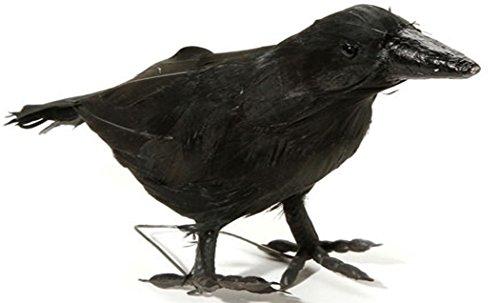 Maleficent Bird Costume (Large Realistic Black Crow Prop 10 Inch)