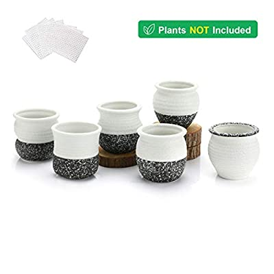 T4U 2.5 Inch Small Ceramic Succulent Planter Pots with Drainage Hole Set of 6, Snowflakes Glazed Porcelain Handicraft as Gift for Mom Sister Home Office Table Desk Decoration: Garden & Outdoor