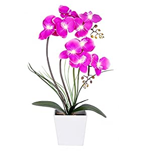 Homeseasons LED Lighted Artificial Flower Arrangement-Battery Operated Orchid Pot with 9 Lights 70