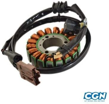 759735 //GEOPOLIS//SATELIS 400 Teknix STATOR MAXI SCOOTER ADAPTABLE 400//500 PIAGGIO MP3 58108R